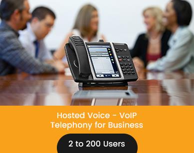 VoIP - Telephony for Business